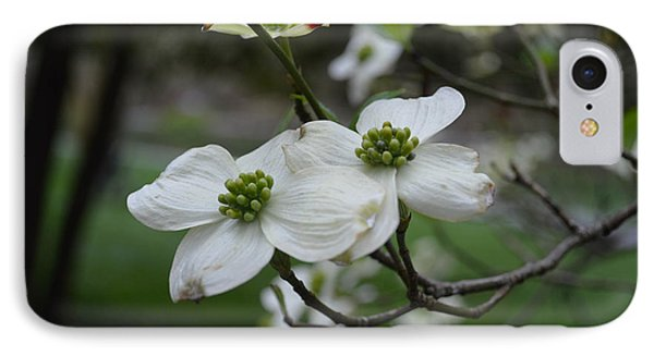 IPhone Case featuring the photograph Dogwood by Linda Geiger