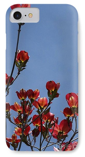 IPhone Case featuring the photograph Dogwood by Victor K