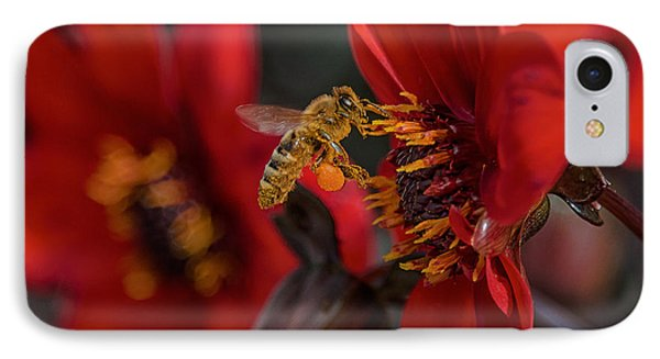 Doing His Bees-ness IPhone Case by Bill Roberts