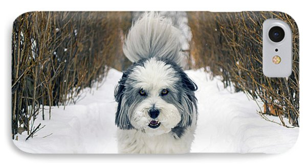 IPhone Case featuring the photograph Doing The Dog Walk by Keith Armstrong