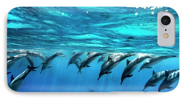 Dolphin Dive IPhone Case by Sean Davey