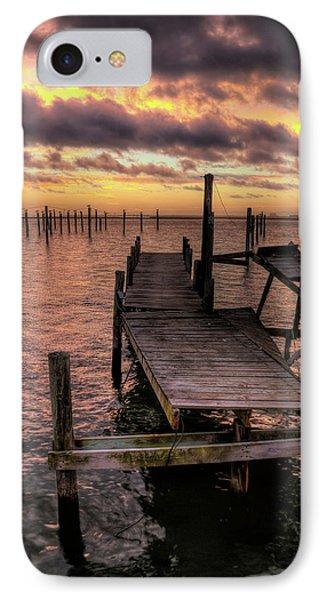 Dolphin Dock IPhone Case by John Loreaux