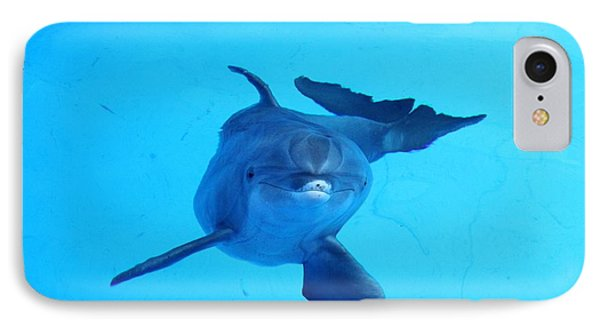 Dolphin Underwater IPhone Case by Theresa Willingham