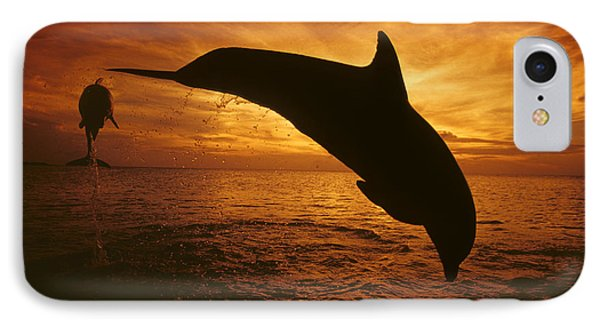 Dolphins And Sunset Phone Case by Dave Fleetham - Printscapes