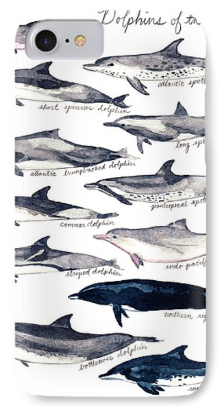 Dolphins Of The World Illustrated Chart Nautical Marine Biology Ocean Life IPhone Case by Laura Row
