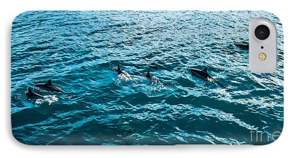 Dolphins Off Of The Na Pali Coast IPhone Case