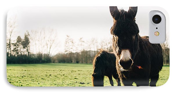 Donkey And Pony IPhone 7 Case by Pati Photography