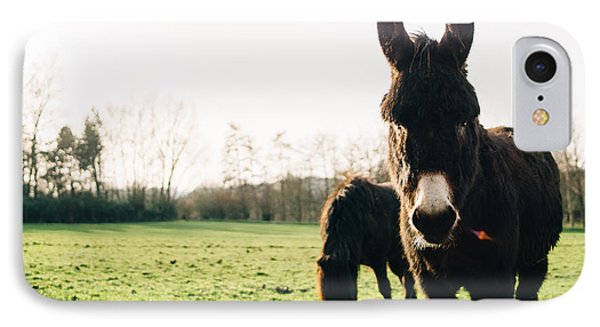 Donkey And Pony IPhone Case by Pati Photography
