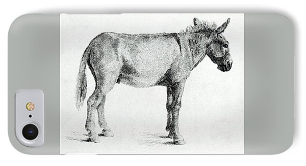 Donkey IPhone Case by George Stubbs