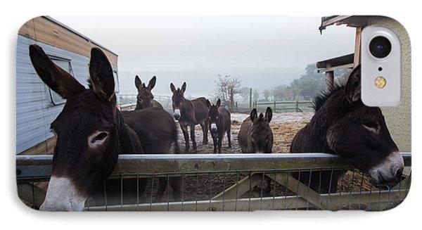Donkeys Phone Case by Dawn OConnor