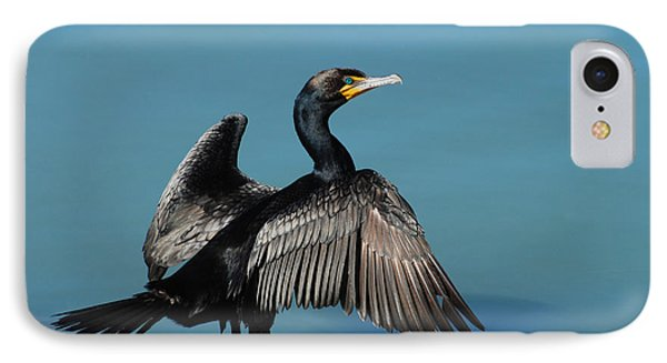 Double-crested Cormorant Spreading Wings Phone Case by Merrimon Crawford