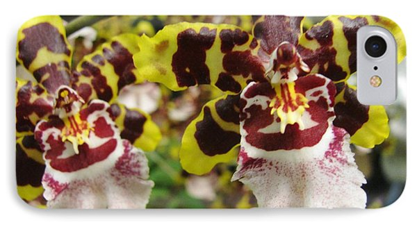 IPhone Case featuring the photograph Double Odontoglossum Orchid by Alfred Ng