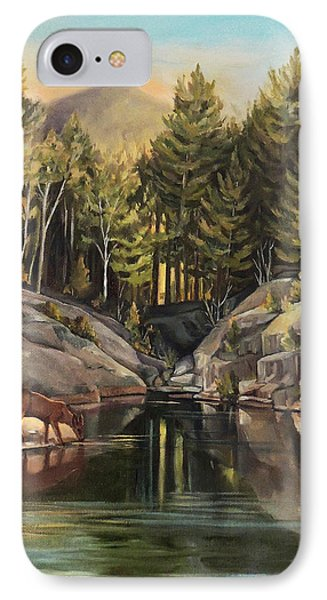Down By The Pemigewasset River IPhone Case by Nancy Griswold