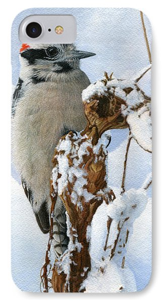 Downy Woodpecker  IPhone Case by Ken Everett