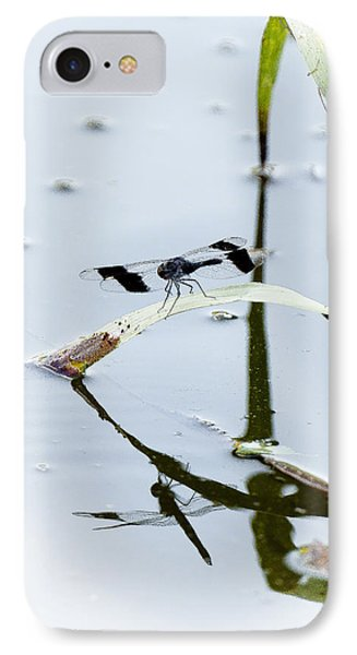 Dragon Fly IPhone Case by Patrick Kain