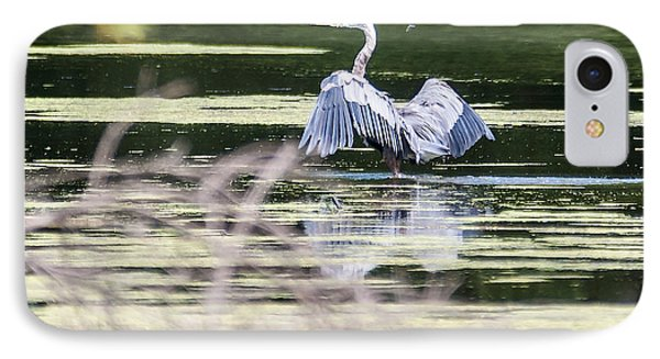 Dragonfly And Great Blue Heron IPhone Case by Edward Peterson