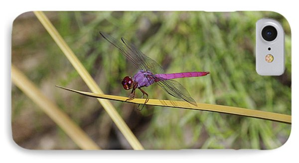 IPhone Case featuring the photograph Dragonfly by David Rizzo