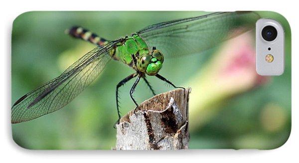 Dragonfly In The Flower Garden Phone Case by Carol Groenen