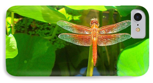 Dragonfly IPhone Case