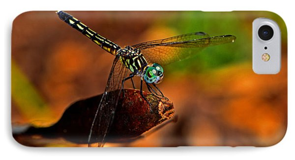 IPhone Case featuring the photograph Dragonfly On A Flower Pod 002 by George Bostian
