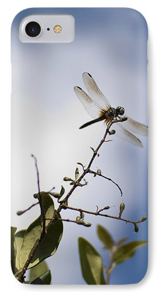 Dragonfly On A Limb Phone Case by Dustin K Ryan
