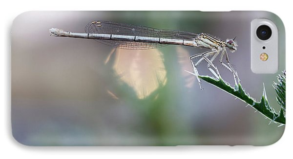 IPhone Case featuring the photograph Dragonfly On Leaf by Michal Boubin
