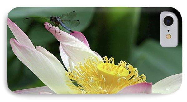 Dragonfly On Lotus Phone Case by Sabrina L Ryan