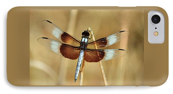 IPhone Case featuring the photograph Dragonfly On Reed by Sheila Brown