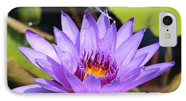 Dragonfly On Water Lily Phone Case by Carol Groenen
