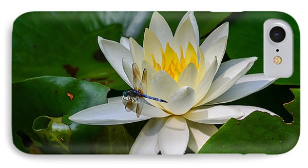 Dragonfly On Waterlily  IPhone Case by Allen Sheffield