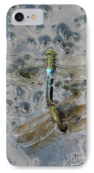 Dragonfly Reflections IPhone Case