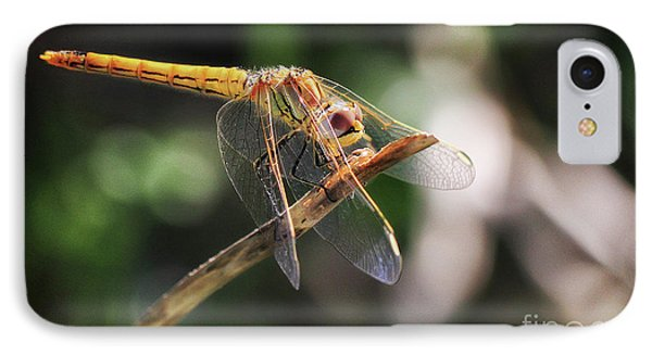 Dragonfly Resting IPhone Case by Stephan Grixti