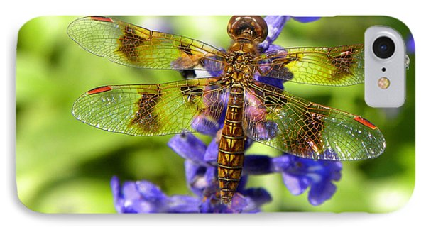 IPhone Case featuring the photograph Dragonfly by Sandi OReilly