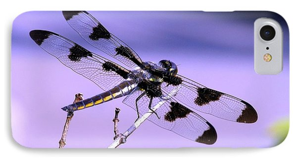 Dragonfly IPhone Case by Susan  Dimitrakopoulos