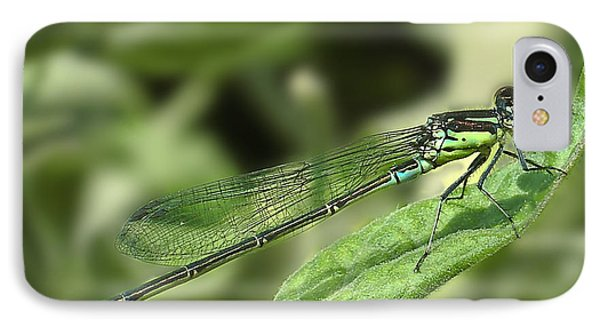 Dragonfly1 Phone Case by Svetlana Sewell