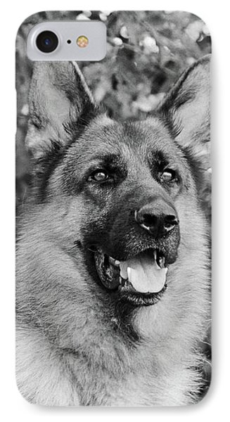 IPhone Case featuring the photograph Drake Watching by Sandy Keeton