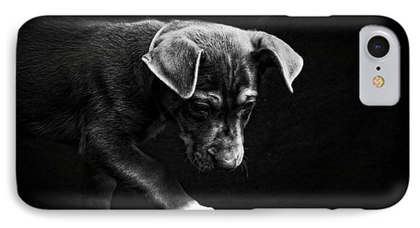 Dramatic Black And White Puppy Dog IPhone Case by Edward Fielding