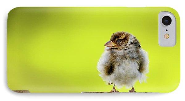 Dream Sparrow Phone Case by Betty LaRue