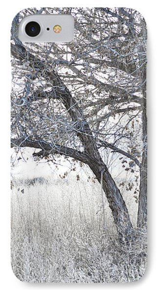 IPhone Case featuring the photograph Dreamy Bosque Tree by Andrea Hazel Ihlefeld