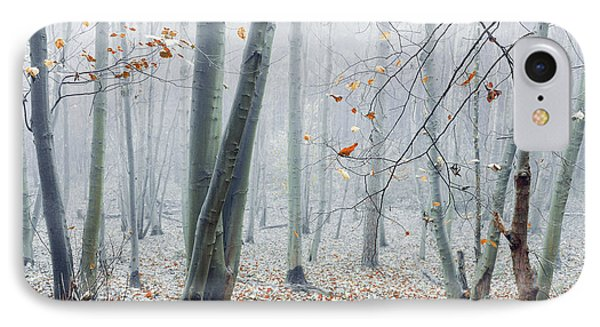 Dreamy Forest IPhone Case by Svetlana Sewell