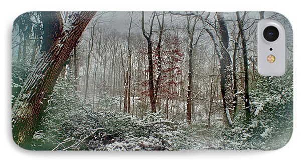 Dreamy Snow IPhone Case by Sandy Moulder