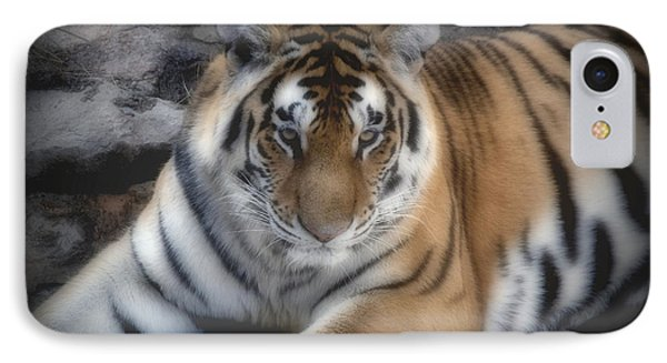 Dreamy Tiger Phone Case by Sandy Keeton