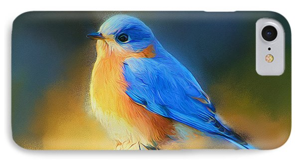 Dressed In Blue IPhone Case by Tina  LeCour