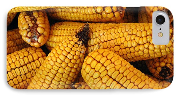 Dried Corn Cobs IPhone Case