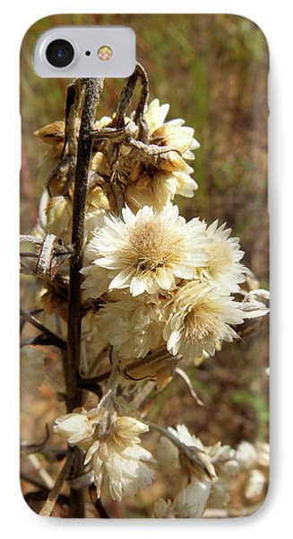 IPhone Case featuring the photograph Dried Flowers by Scott Kingery