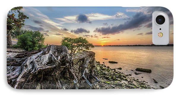 IPhone Case featuring the photograph Driftwood At The Edge by Debra and Dave Vanderlaan