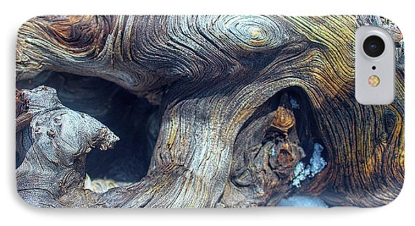 Driftwood Swirls IPhone Case by Todd Breitling
