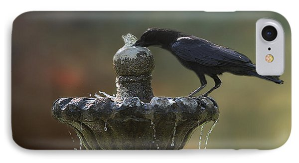 Drinking Crow IPhone Case
