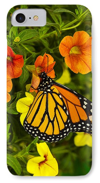 Drinking From A Flower IPhone Case