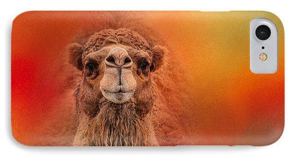 Dromedary Camel IPhone Case by Jai Johnson
